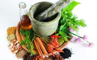 Лечение грыжи народными средствами в домашних условиях: простые и эффективные рецепты