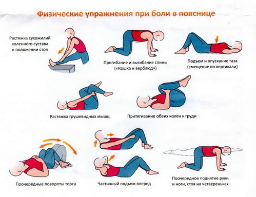 Упражнения для спины при грыжах позвоночника: пошаговое руководство
