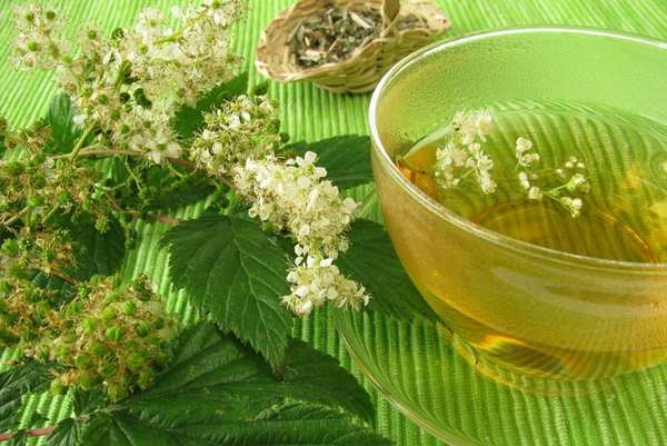 Лечение грыжи пищевода народными средствами, упражнения