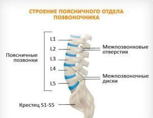 Межпозвоночная грыжа пояснично крестцового отдела позвоночника