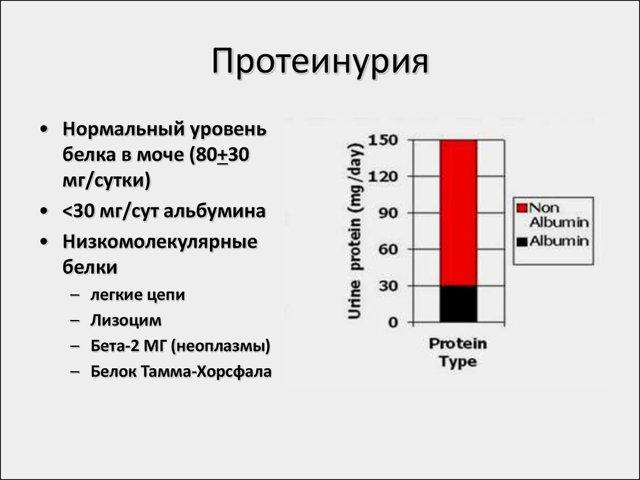 Диета при белке в моче (протеинурия)